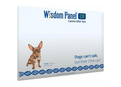 wisdom panel honden dna test